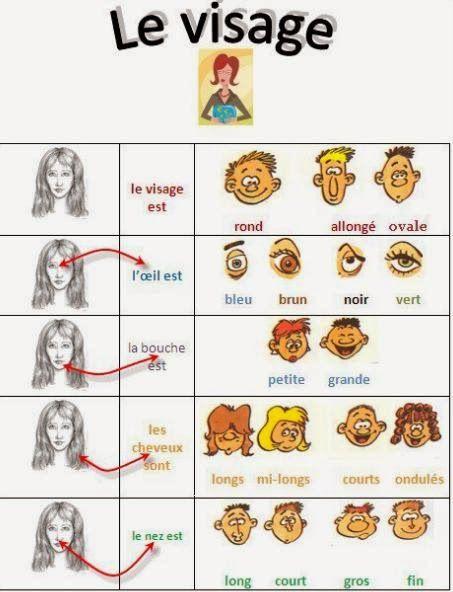 Descripción de la cara en francés